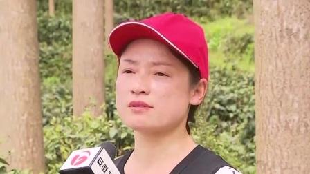 """安徽新闻联播 2019 林长制:加速释态""""红利"""""""
