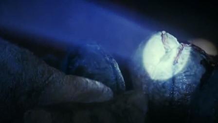小伙在洞里玩手电筒,结果发现了几十枚怪蛋,里面有怪物破壳而出