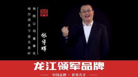 中国品牌日领军企业-张宇辉