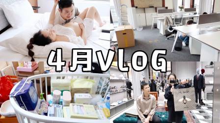 【默小宝】4月VLOG | 孕照花絮、工作室搬家、孕期囤货...