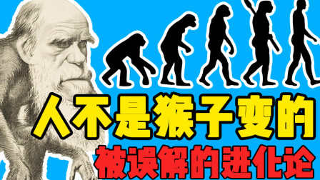 """人不是猴子变的,别再说""""进化论""""了"""