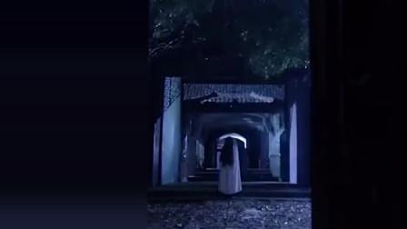 梅花档案:在一个雷电交加的夜晚,有白衣女人出现,看着瘆得慌
