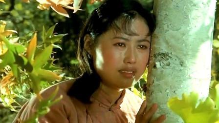 1979老电影《归心似箭》电影原声主题曲【雁南飞】演唱: 单秀荣