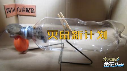 四川话爆笑配音:聪明的老鼠为什么又中了人类的陷阱?笑的肚儿痛