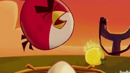 愤怒的小鸟:小鸟的蛋被猪偷走了,生气的样子好可爱!