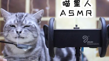 做ASMR的小猫咪——哼唧声,舔酸奶和吃海鲜冻干的声音!