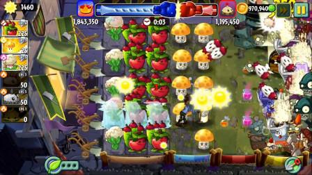 哲爷和成哥植物大战僵尸2 第一季 技场里全是金卡植物战士