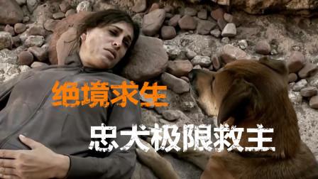 忠犬极限救主:地表最强女运动员的绝境求生