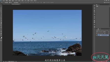 用ps给单调的天空多加几只鸟,两张图片之间的复制,仿制图章能胜任!