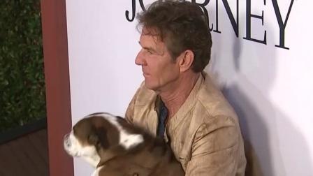 您早 2019 《一条狗的使命2》洛杉矶首映 主演回应虐狗传闻