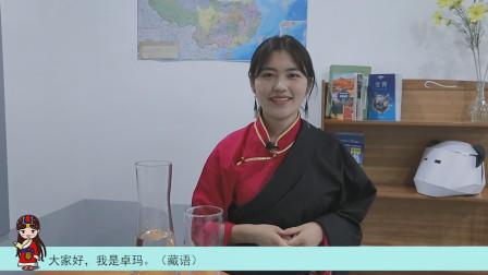 最贵10块一升,西藏的油价为何那么高?