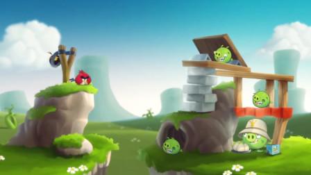 愤怒的小鸟:小鸟和猪相互叫板,来看看猪到底有何底气?