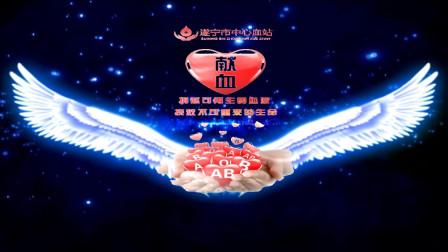四川省遂宁市中心血站《眺望八万里路上走来的身影》演讲LED背景
