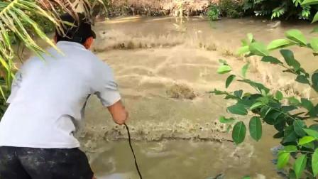 一条不起眼的河沟,农村大哥往里撒一网,哇:这是要爆网的节奏么