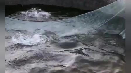 捕鱼:这一网厉害了,网里的大鱼都要破网而出了