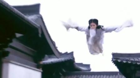 神雕侠侣:小龙女大战金轮大王,两条飘带耍出了面条的感觉