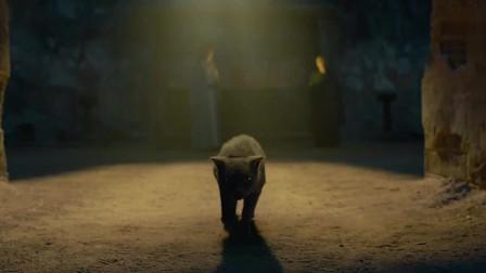 《妖猫传》里最虐心的片段,一见贵妃误终身,妖猫白龙最后的那一口血真的扎心了