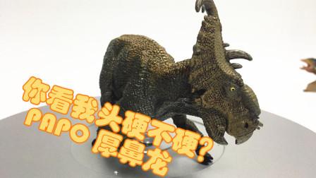 【初丁分享095】我的头大不大!侏罗纪公园侏罗纪世界PAPO厚鼻龙