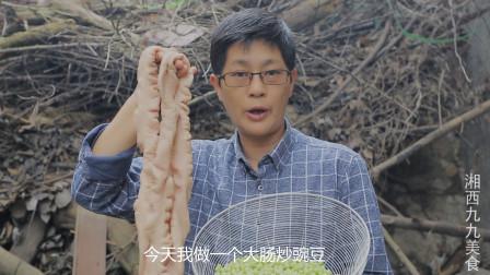 九九大肠炖豌豆,第一次这么吃,豌豆吸肠子香