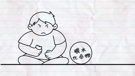 科普视频:碳水化合物是什么?糖尿病和肥胖症患者请高度重视