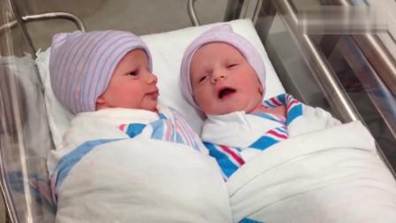 刚出生的双胞胎宝宝在妈妈肚子里还没说够吗?一见面就说不够