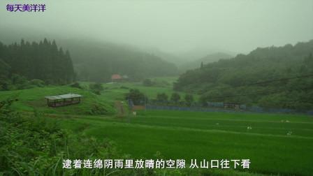 洗眼啦,小森林夏秋篇景色全集,玩手机也要满屏绿色,看完超想去日本小森旅行骑自行车