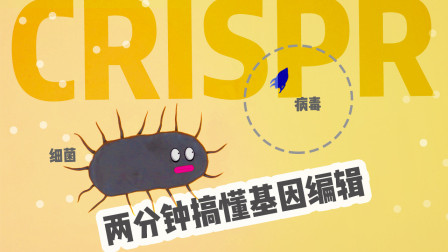2分钟看懂CRISPR,基因编辑从此开始