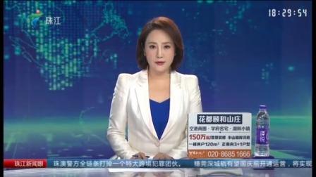 珠江新闻眼 2019 《佛山养犬管理条例(征求意见稿)》举行立法听证会