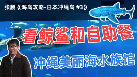 看鲸鲨和自助餐!冲绳美丽海水族馆