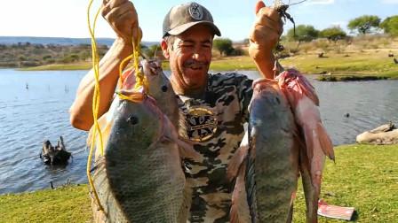 野外河里的罗非鱼真肥美,大爷钓了一会就收获了这么多,真开心!