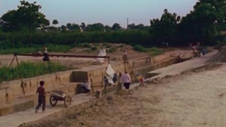 村民玉米地里发现地洞,引出盗墓大案,1300座古墓竟藏有芮国遗址