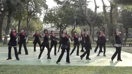 广场舞《潇洒走一回》经典好听的舞曲
