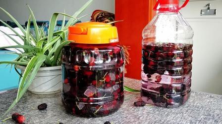 教你在家做桑葚酒,具有滋补养生的功效,做法简单易学,值得收藏