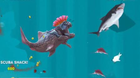 饥饿鲨:梳了莫西干头的邓氏鲨表示藐视一切生物