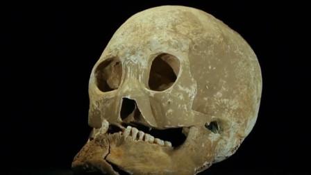 一块附带箭头的头骨,出现在秦始皇陵,专家怀疑是扶苏的脑袋