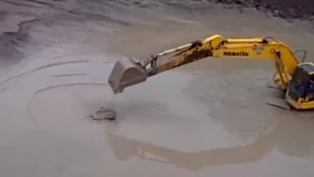 鳄鱼VS挖掘机,鳄鱼下场会怎样?睁大眼看仔细!