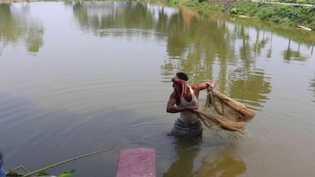 鱼塘捕鱼,最适合撒网捕捉了,看看小哥一网下去能拉多少上来?