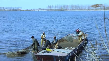 这么名贵的鱼,不仅在南方有,在黑龙江也有。