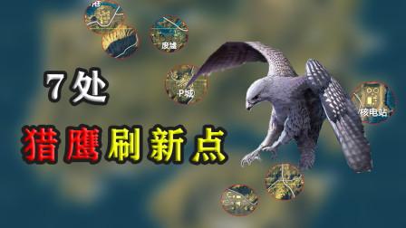 刺激战场:揭秘海岛猎鹰7处固定刷新位置!获得新宠物!