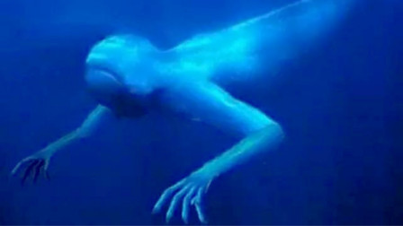 揭秘南极30米神秘巨人,全身雪白,身体结构和人类很像