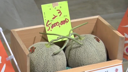 日本2颗蜜瓜拍出500万日元天价 买家:买回去不为了吃