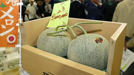 日本2颗哈密瓜拍卖出500万日元 创下历史新高