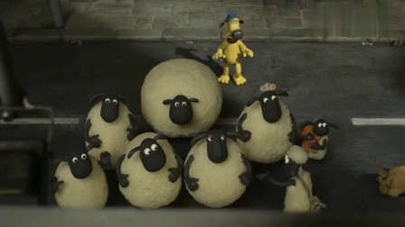 小羊肖恩:小羊出了门看到了久别重逢的主人图片,很是激动!