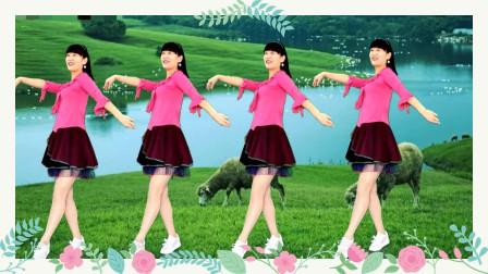 养眼藏族舞《心花开在草原上dj》广场舞,草原歌曲,简单大气!
