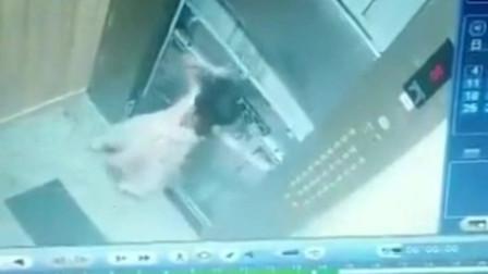 电梯惊魂2分钟!