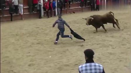 无数老外,挑衅愤怒的公牛,不得不说真的是既紧张又刺激!西班牙斗牛