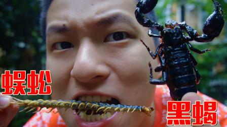 挑战油炸可食用蜈蚣和大黑蝎子!千万不要吃特别的苦还反胃