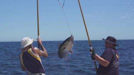 澳洲斯特尔集团:三代人为世界供应养殖南方蓝鳍金枪鱼!