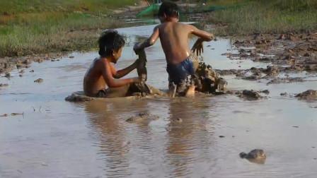 哥哥带弟弟去抓鱼,边滚泥巴边抓,这场面充满了童年的欢乐