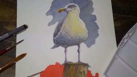 大师现场教学画一只海燕,各位学画画的小伙伴们不要错过